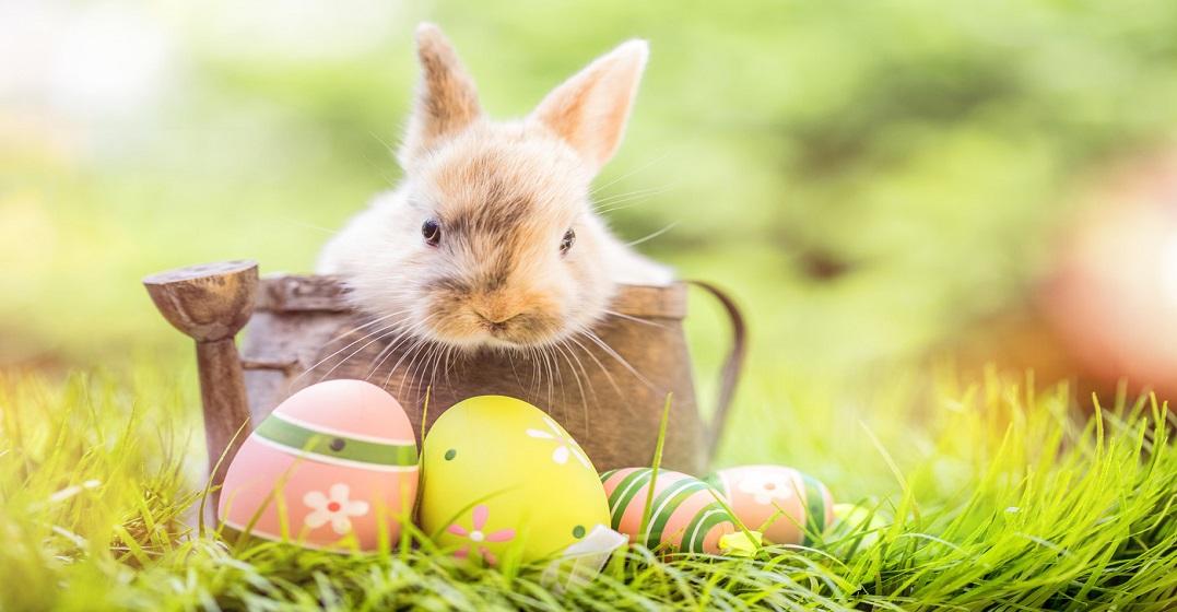 Was Feiert Man An Ostern