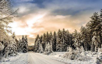 Expresiones relacionadas con el invierno en inglés, francés, alemán y español