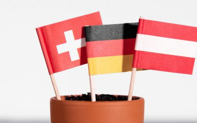 German from Germany, Austria and Switzerland: Key vocabulary differences